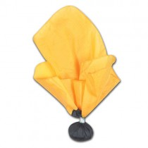 Weighted Referee Penalty Flag